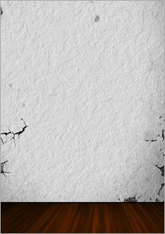 壁のひび割れ修繕前①